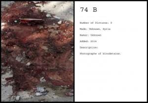 http://michielburger.nl/files/gimgs/th-79_74-B-PT-Michiel_Burger_v2.jpg