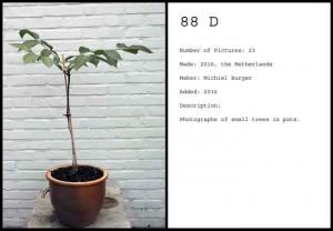 http://michielburger.nl/files/gimgs/th-79_88-D-PT-Michiel_Burger.jpg