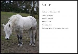 http://michielburger.nl/files/gimgs/th-79_94-B-PT-Michiel_Burger.jpg